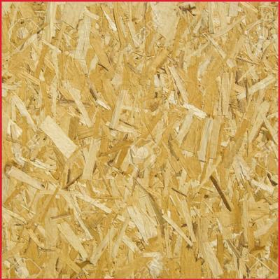 OSB Boards 2440 x 1220mm